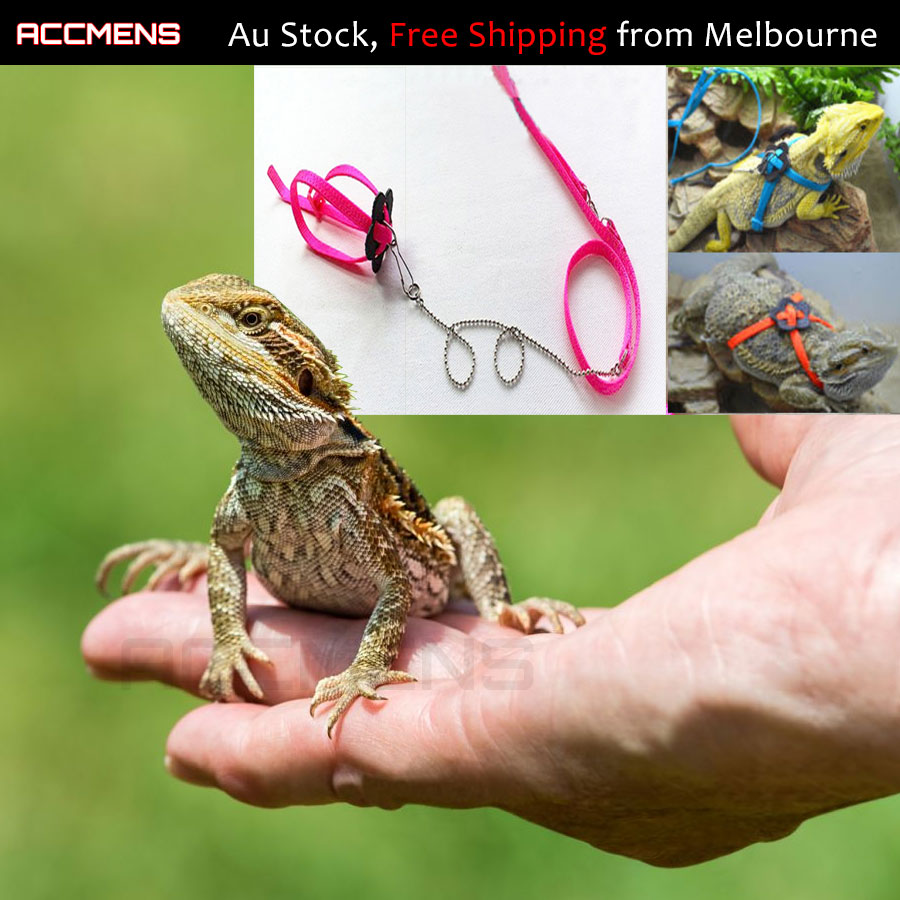 1.2M Long Adjustable Reptile Pet Lizard Harness Leash Lead ...